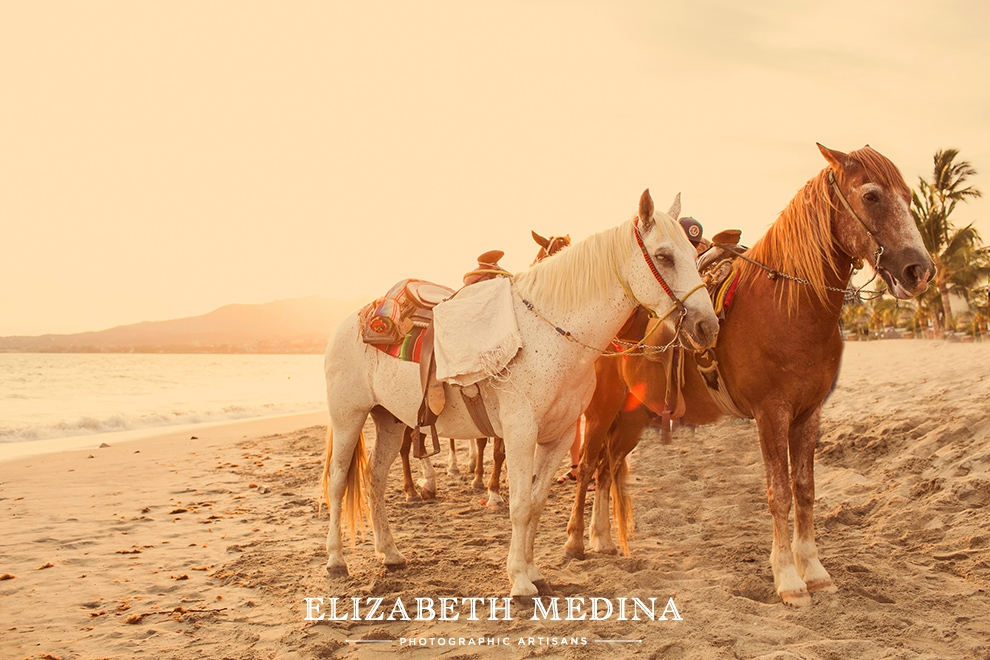 Sunset on the beach, horses, Puerto Vallarta, Mexico, Destination wedding photographer Elizabeth Medina.
